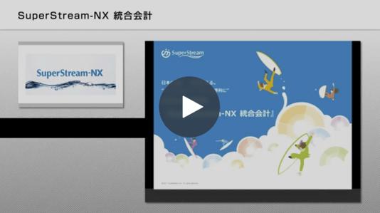 SuperStream-NX Ver.2.0 統合会計