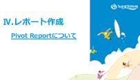 Pivot Reportについて